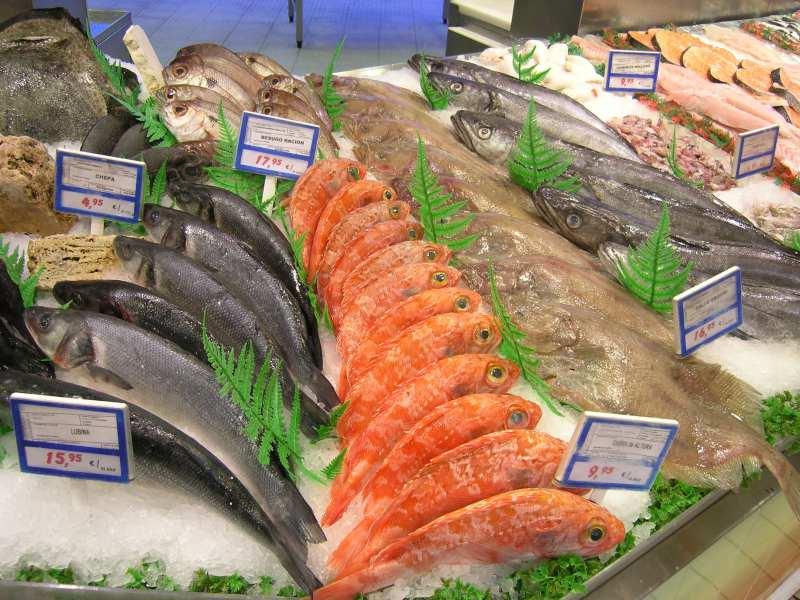 Cómo montar una pescadería: tienda de pescados