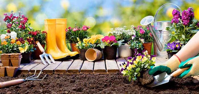 Pasos para iniciar negocio de jardinería