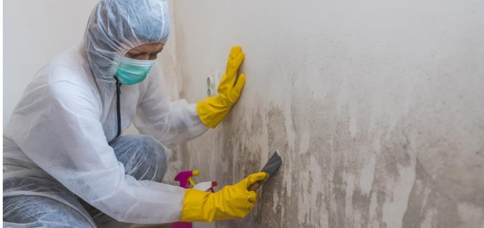 Montar una empresa de limpieza: tipos de servicios de limpieza