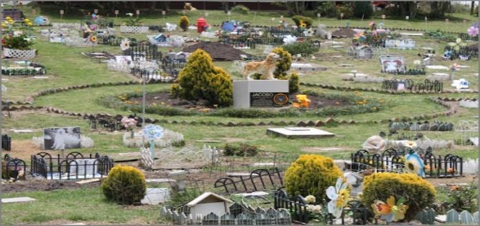 Lapidas en un negocio cementerio de mascotas