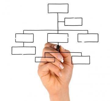 Organigrama empresarial - organigrama de una empresa