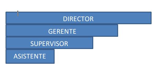 organigrama en barras