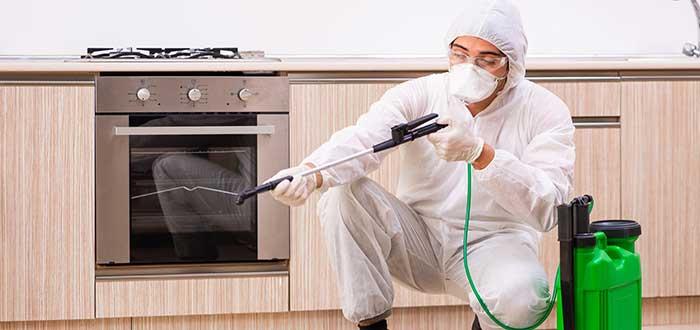persona-realizando-un-trabajo-de-fumigación