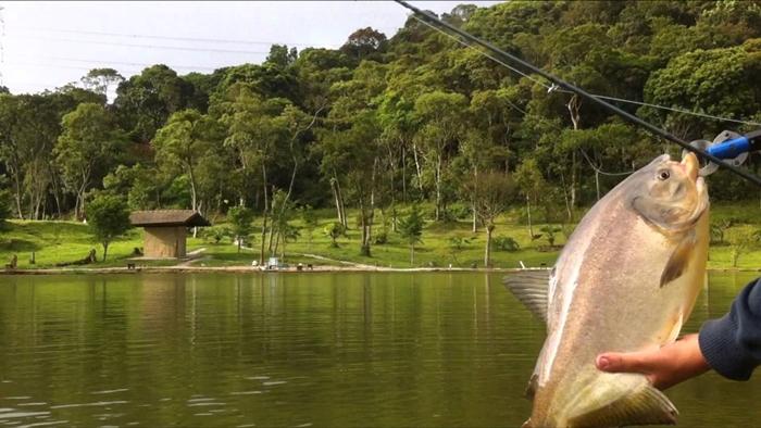 Montar un pesquero en su terreno rural