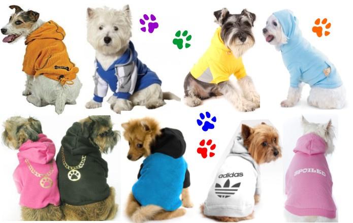 Cómo montar una fábrica de ropa para mascotas