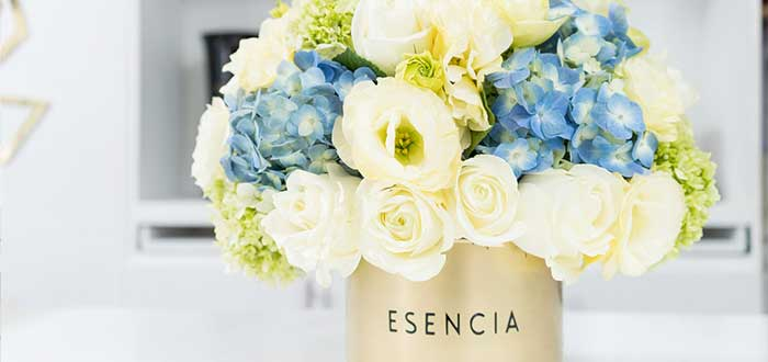 Esencia flower floristería franquicia