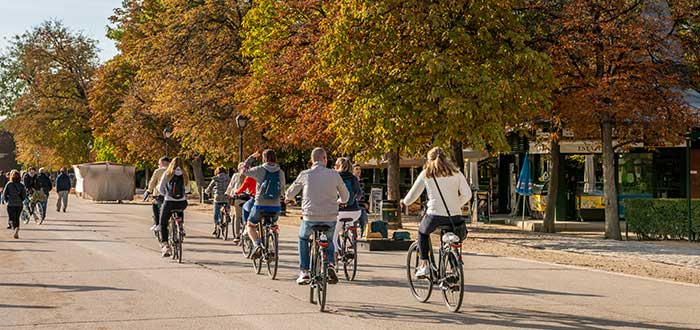 Bicitours - Negocio en ciudades turísticas
