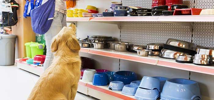 10 ideas de franquicias de tiendas de mascotas
