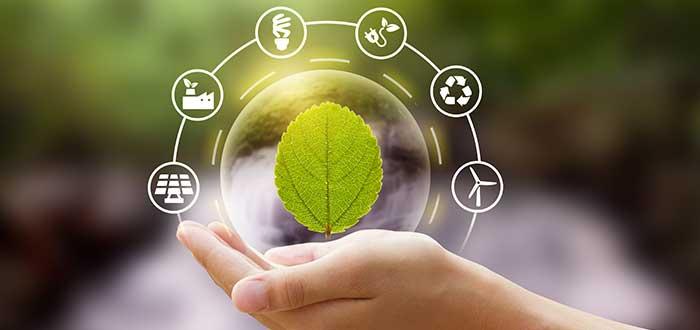 Ideas de emprendimientos sustentables y ecológicos