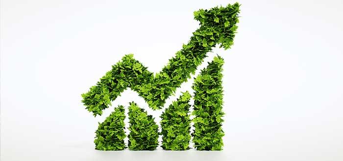 Qué negocio es sustentable